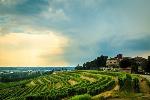 Storm over Italian vineyard