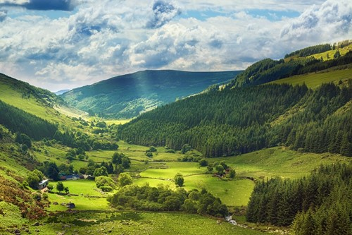 A view of the green hills in Wicklow, Ireland